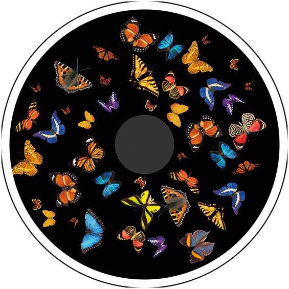 Obrazkovy kotuc motyle 2