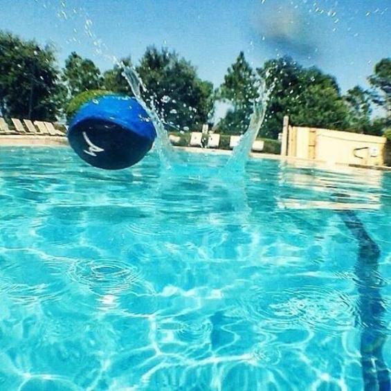 Skakajuca vodna lopticka