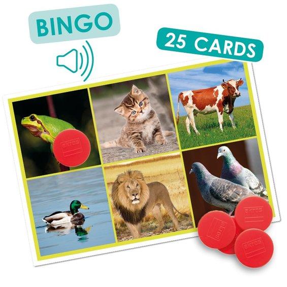 Sluchove bingo zvierata a priroda 2