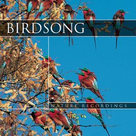 CD Vtáčia pieseň