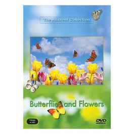 DVD Motýle a kvety