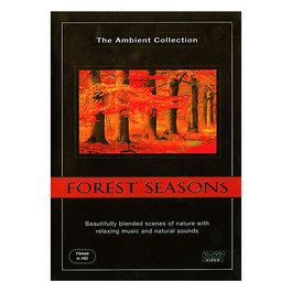 DVD Ročné obdobia v lese