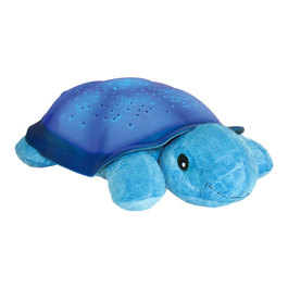 Hviezdna korytnačka - Modrá