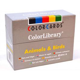 Kolekce fotografií - Zvířata