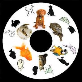 Obrázkový kotouč - Domácí zvířata