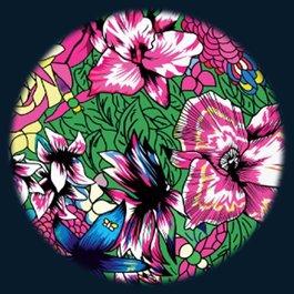 Obrázkový kotouč - Květiny