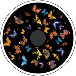 Obrázkový kotouč - Motýli