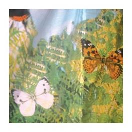 Obrázkový kotouč - Motýli Británie