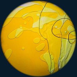 Obrázkový kotouč s tekutinou - žlutá