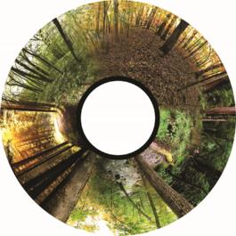 Obrázkový kotouč - Stromy
