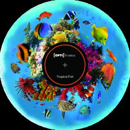 Obrázkový kotouč - Tropické ryby