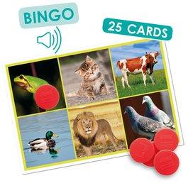 Sluchové bingo - Zvířata a příroda